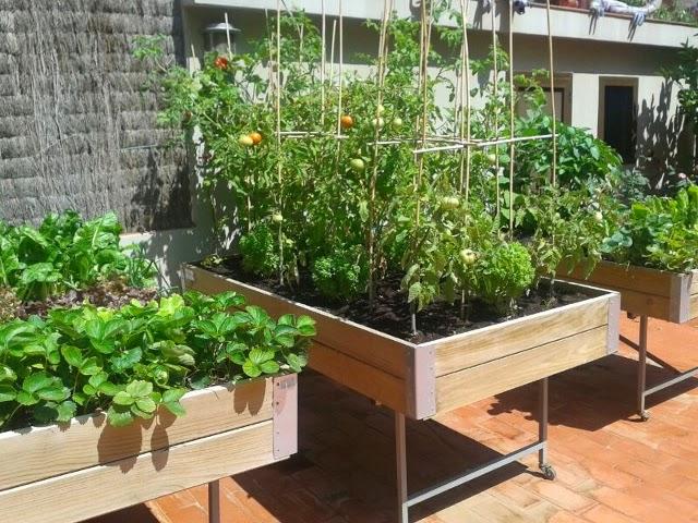 las mesas de cultivo son ideales para el huerto urbano